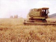 Правительство Крыма утвердило механизм предоставления субсидий сельхозтоваропроизводителям