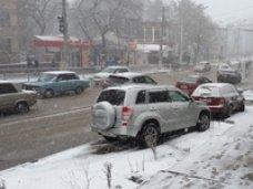 Госкомитет по ценам Крыма пожаловался в ГИБДД на водителей, разрушивших клумбу