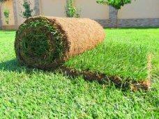Рулонный газон от компании GardenPark - удобство и красота ландшафтного дизайна